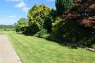 Side Garden, Holl...