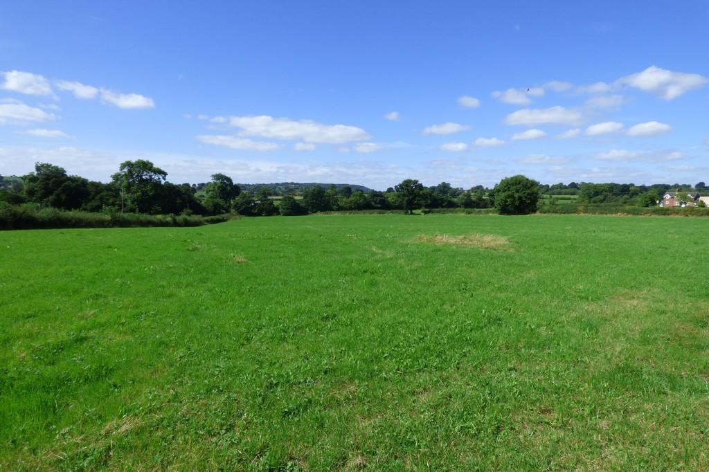 View, Hollington ...