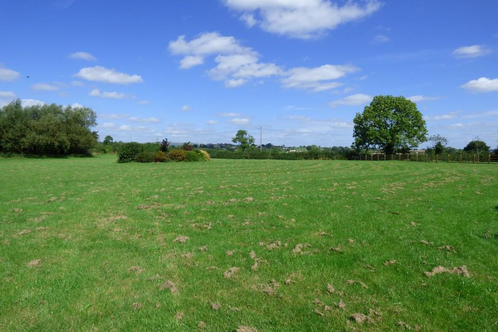 View 2, Hollingto...