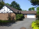 Detached Bungalow in The Avenue, Sale...