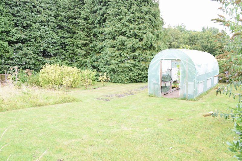 poly tunnel area