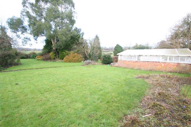 Meadow View-garden.j