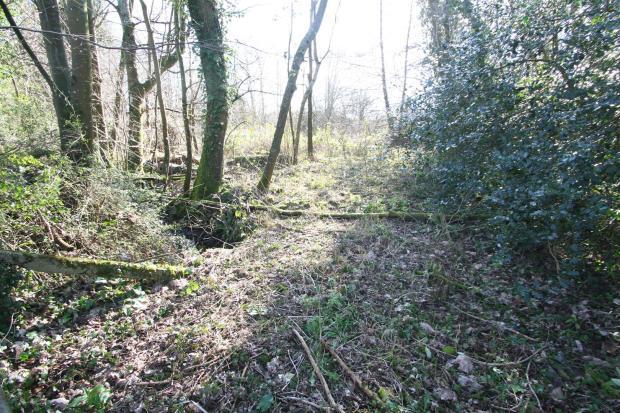 Meadow View-land.jpg