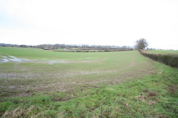 Meadow View-view.jpg