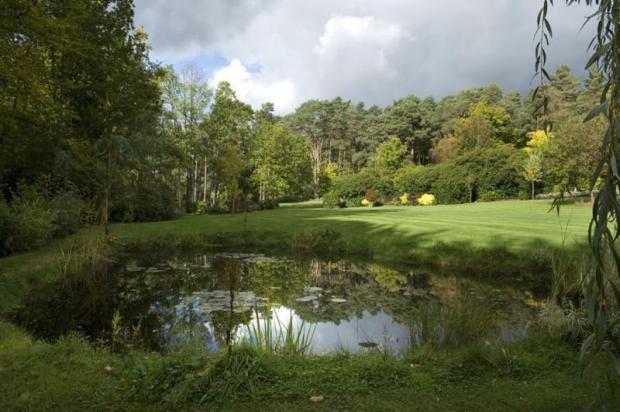 20. Georgian Mansion - garden with pond view