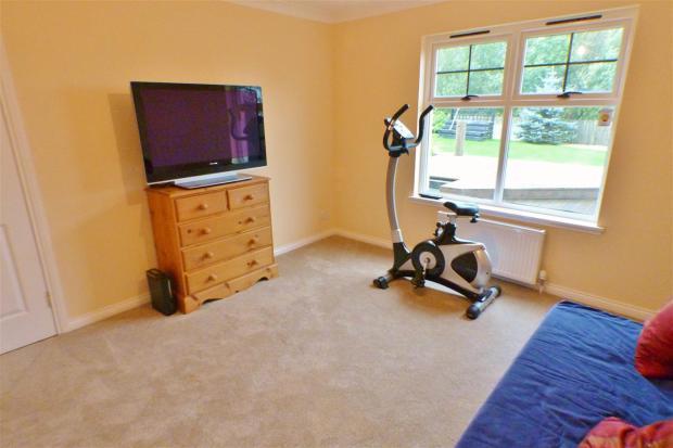 Family / Bedroom