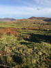 Farm Land in Waterville, Kerry