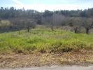 property for sale in Serpins, Beira Litoral