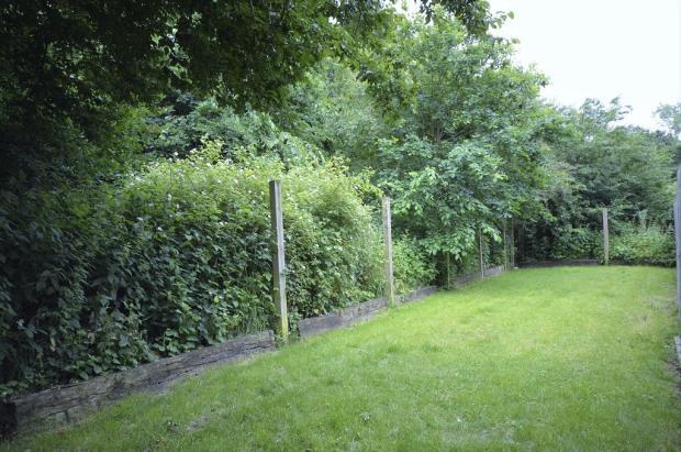Beyond fence