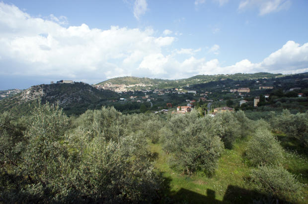 11. View