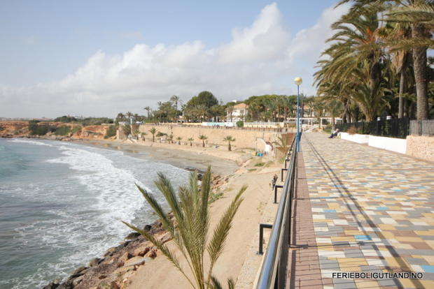 Punta Prima Beach 1