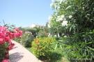 Garden area+pool
