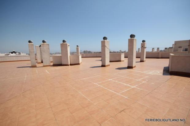 Communal Roof (1)