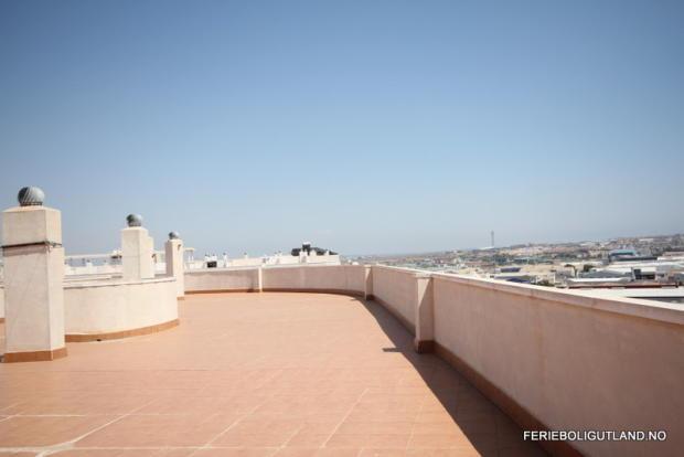 Communal Roof (2)