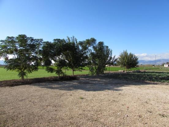 Surrounding Land (2)
