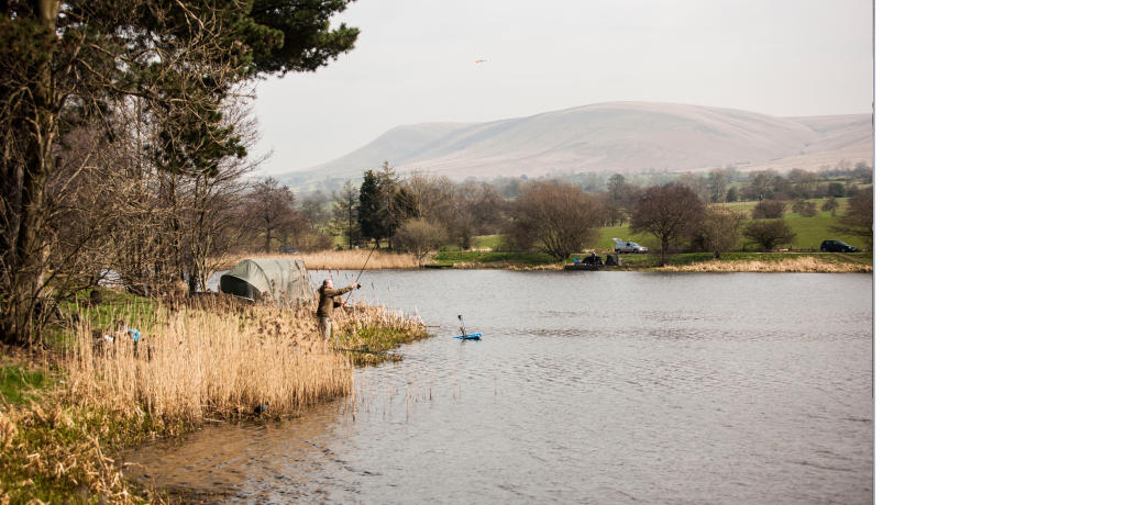 Pendle Hill View