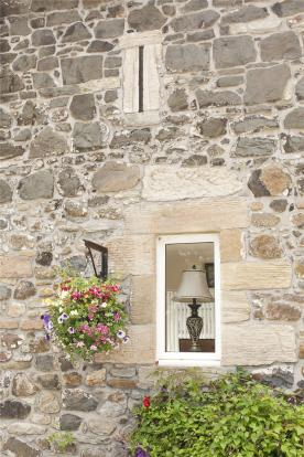 Window/Flowers