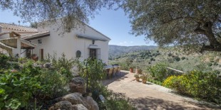4 bedroom Country House in Andalusia, Malaga...