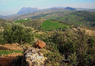 Views and land