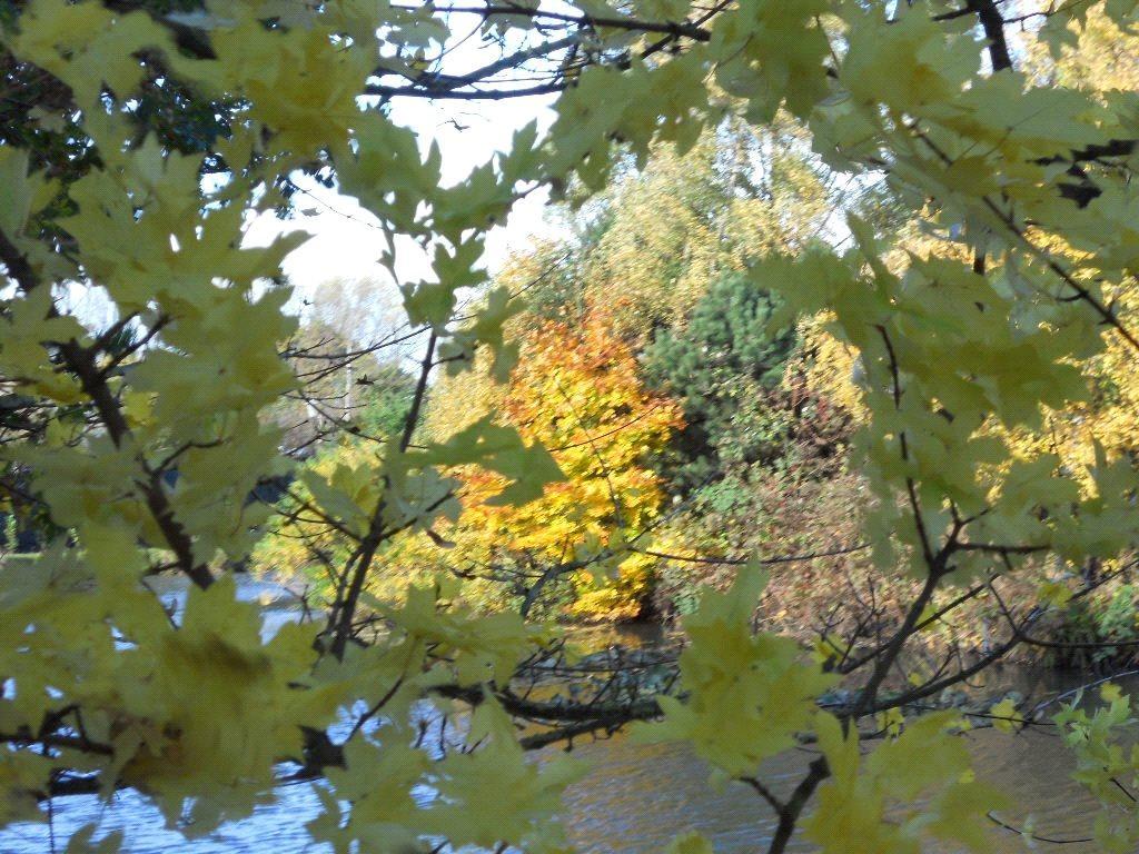 Fishing Lake Autumn