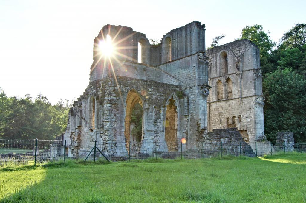 Historical Roche Abbey - a gentle stroll away