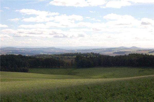 Upper Pasture