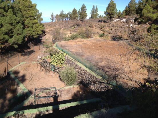 views farm land