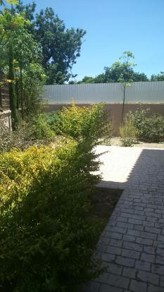 Patio & garden