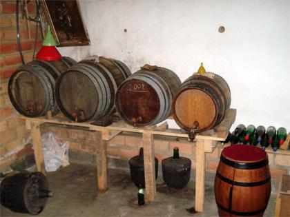 Wine Cellar - 2