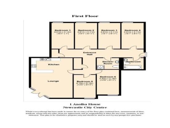 Floor Plan - F1