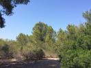 property for sale in Mallorca, Santa Ponsa, Santa Ponsa