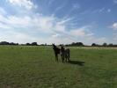 property for sale in Freedom Farm, Suffolk IP13 0LR