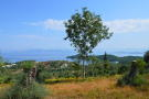 Land in Ionian Islands, Corfu...
