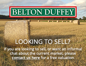 Get brand editions for Belton Duffey, Fakenham