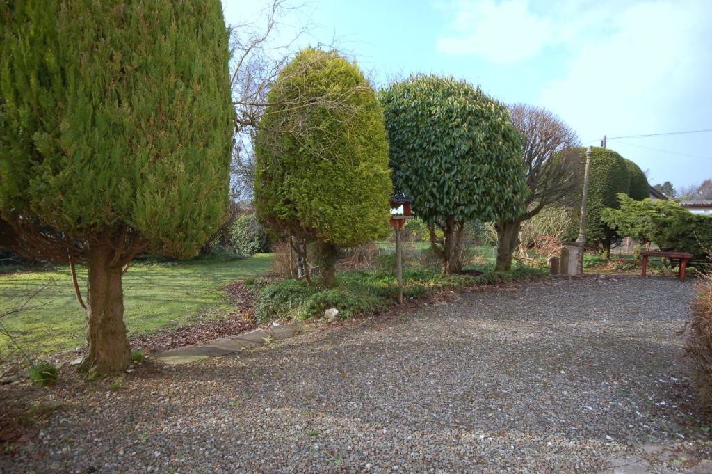 Driveway/Side Garden