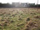Barrhill Terrace Land