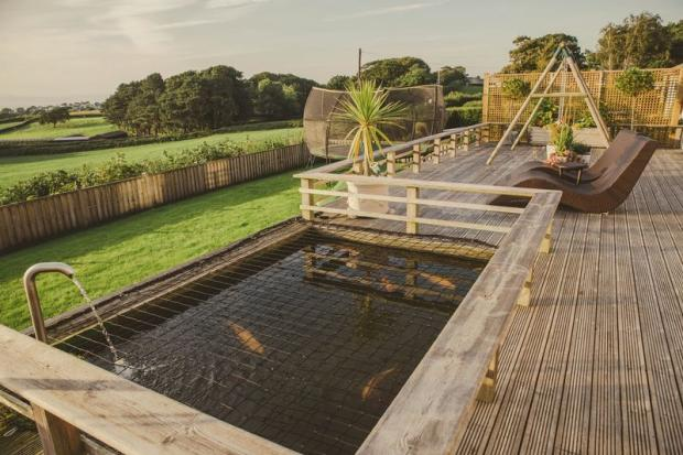 Deck and Pond