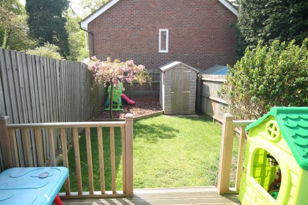 Garden May 2016.JPG