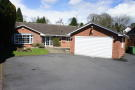 Detached Bungalow in Temple Road, Dorridge