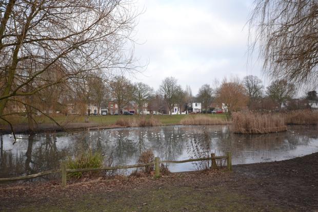 Ham Pond