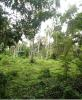 property for sale in Dumaguete