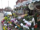 Shop for sale in Heathers Fruit ShopBull...