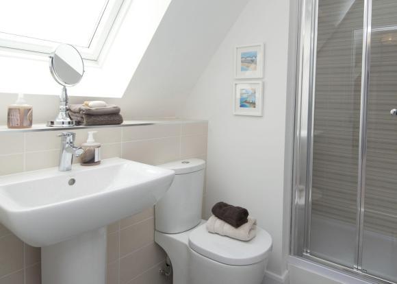 Maddoc shower room