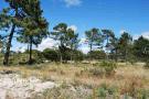 Alentejo Land for sale