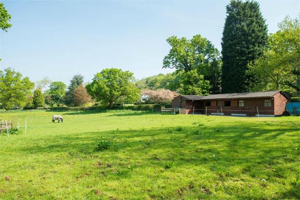 Paddocks/Stables