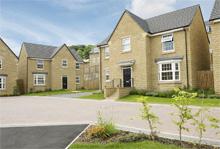 David Wilson Homes, The Paddocks