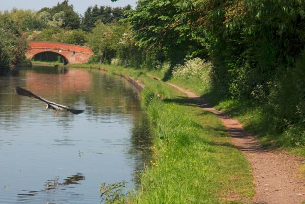 Walk to Loughborough