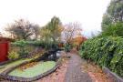 Rear Patio & Gardens