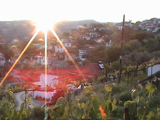 sunrise from annex