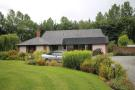 Detached Bungalow for sale in Naas, Kildare